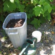 compost tea operation