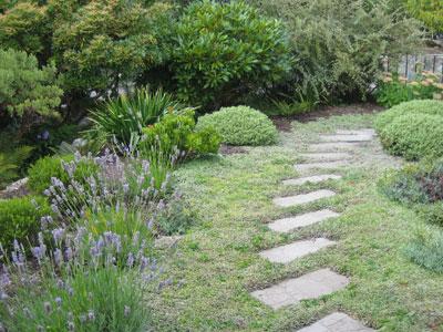 lauries garden