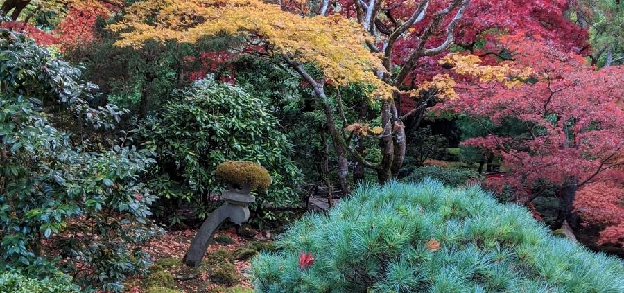 Fall Butchart Gardens