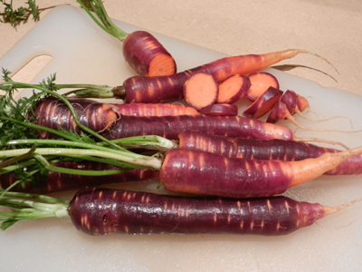 Purple-haze-carrots