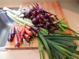Veggie Harvest For February Dinner