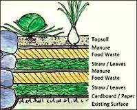 Lasagne Gardening