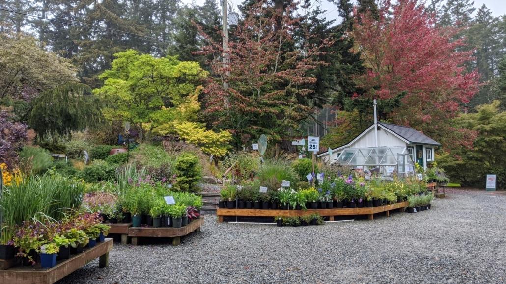 Russell Nursery Perennials