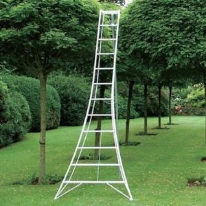 Hasegawa ladder