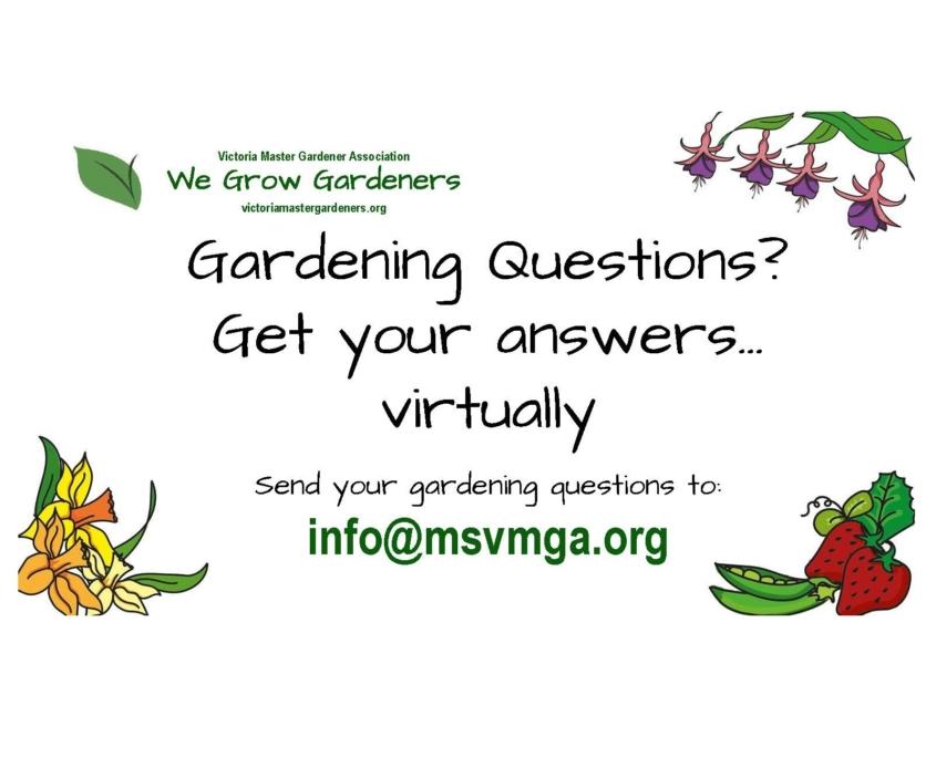 Master Gardeners 2021 sq